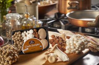Gourmet Mushrooms, Inc.